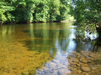 The River Dart, near Ashburton - Places to go in Plymouth