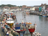 Places to visit in Plymouth and beyond, Weymouth Town Centre